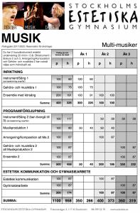 poangpl1720-multimusiker